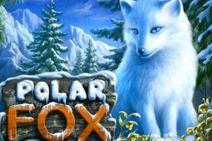 Polar_Fox_212x141